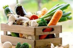 Repolhão verduras e legumes - cx