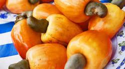 Repolhão verduras e legumes - caju