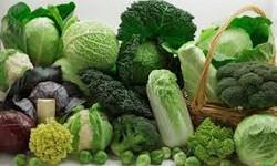 Repolhão verduras e legumes - repolho