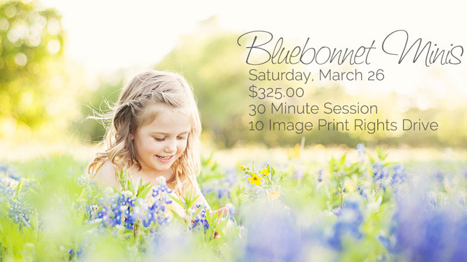 Bluebonnet Photography Austin, Tx | Jessica Mitchell Photography