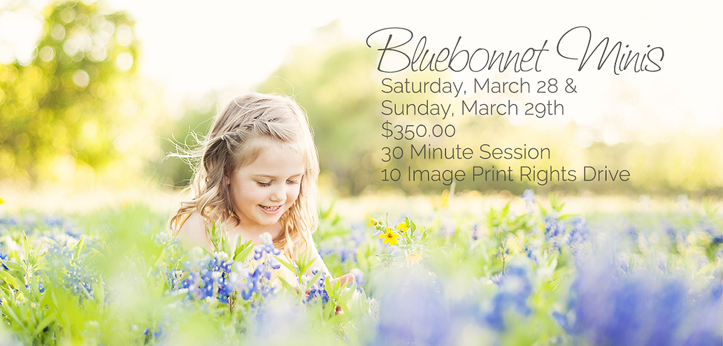 Bluebonnets-Email-Hero.png
