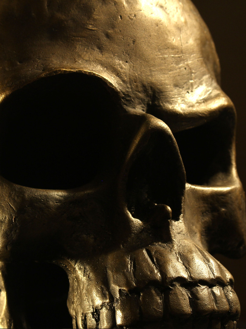 Skeptical Scull 3