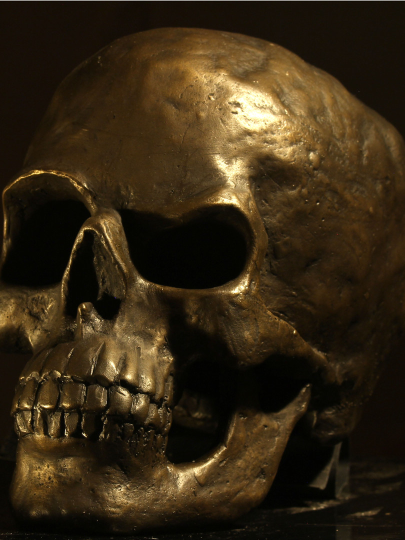 Skeptical Scull 2