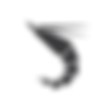 ukami logo-02.png