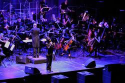 Orchester und Rino