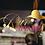 Thumbnail: Freestyle Based Logo