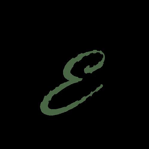 Freestyle Based Logo