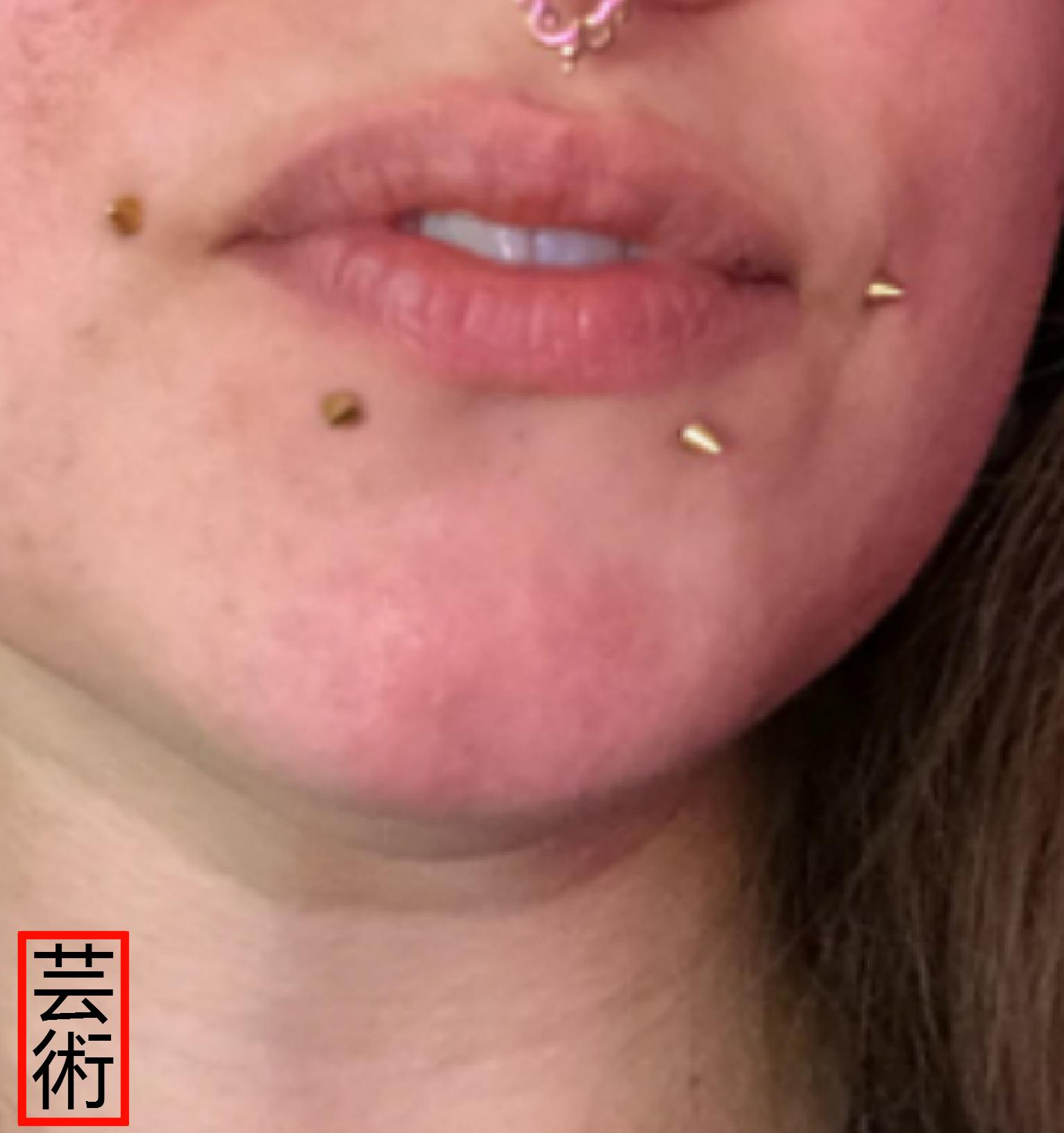 Dahlia Lip Piercings