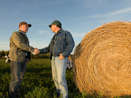 Grain buyers offer contracts to grow non-GMO and organic grains in 2021