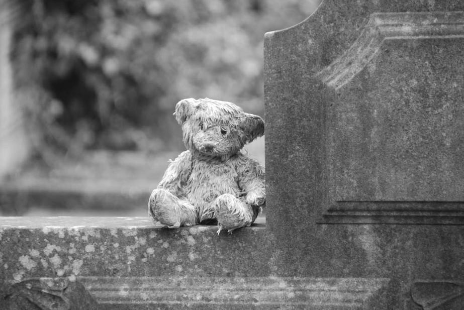 Highgate Teddy