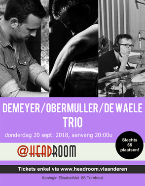 Demeyer trio.jpg