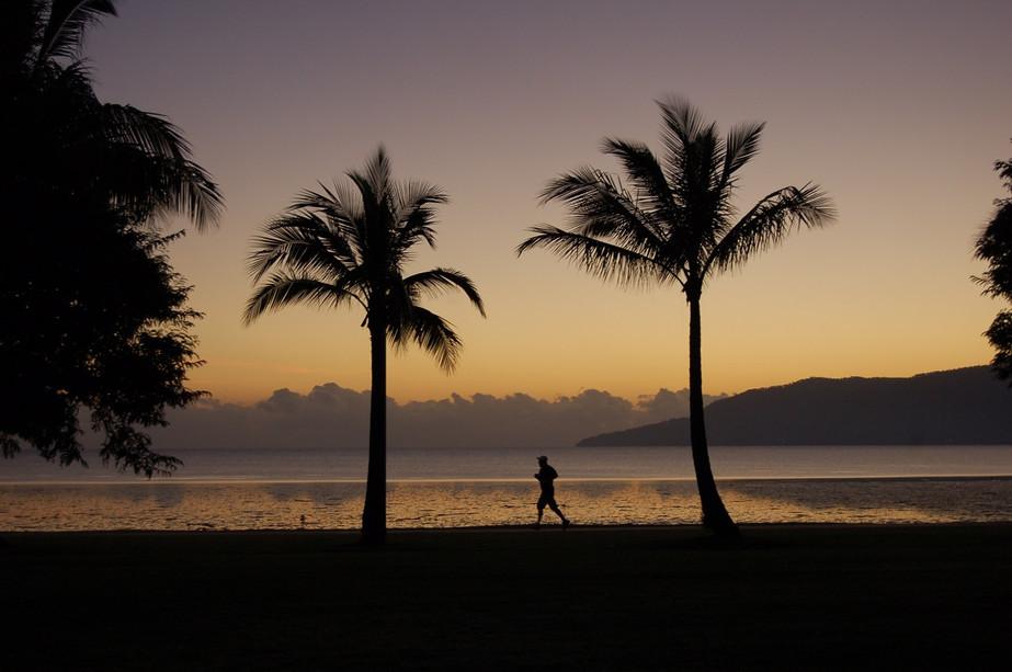 Dawn Runner