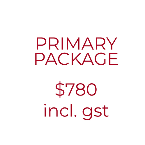 Primary Academic Mentoring Package