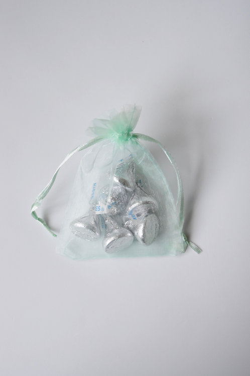 Mint Organza Drawstring Bag