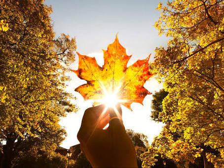 Outono no Canadá, um dos mais belos do planeta.