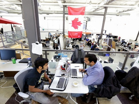 Profissionais internacionais na mira de empresas de Toronto