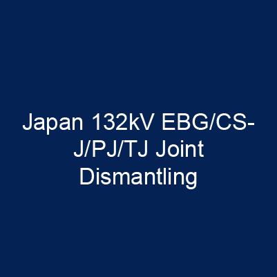 日本132kV EBG/CSJ/PJ/TJ 接續匣拆解