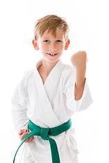 Traverse City Martial Arts Kid