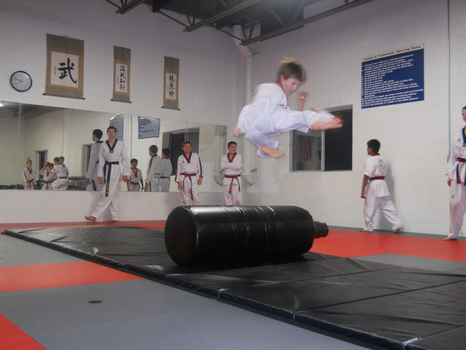 Traverse City Karate Is Martial Arts Fun For The Entire Family