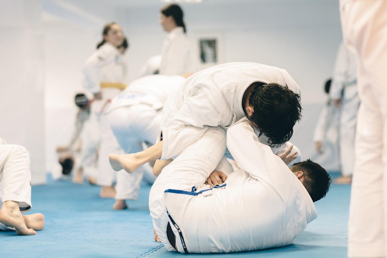 jiu-jitsu exercise training for martial