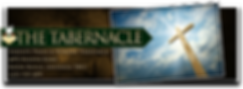 Serenity Logo Banner ONLY 001.png