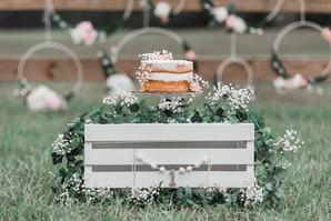 Smash Cake - Jacksonville Florida