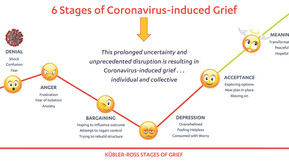 6th Stage of Coronavirus-induced grief . . . are you feeling it yet?