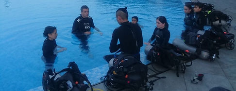 Diver Training Open Water Courses Education