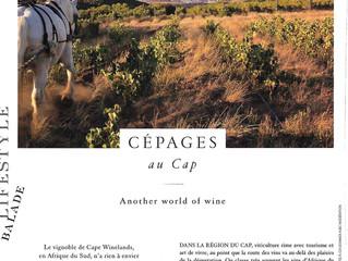 CAPE WINELANDS: Le Vignoble du CAP