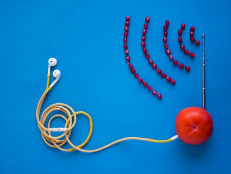 Best of Podcasts über Nachhaltigkeit