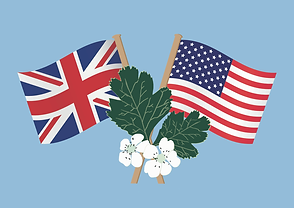 us uk flags.png