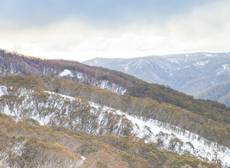 Photographing Mount Buller