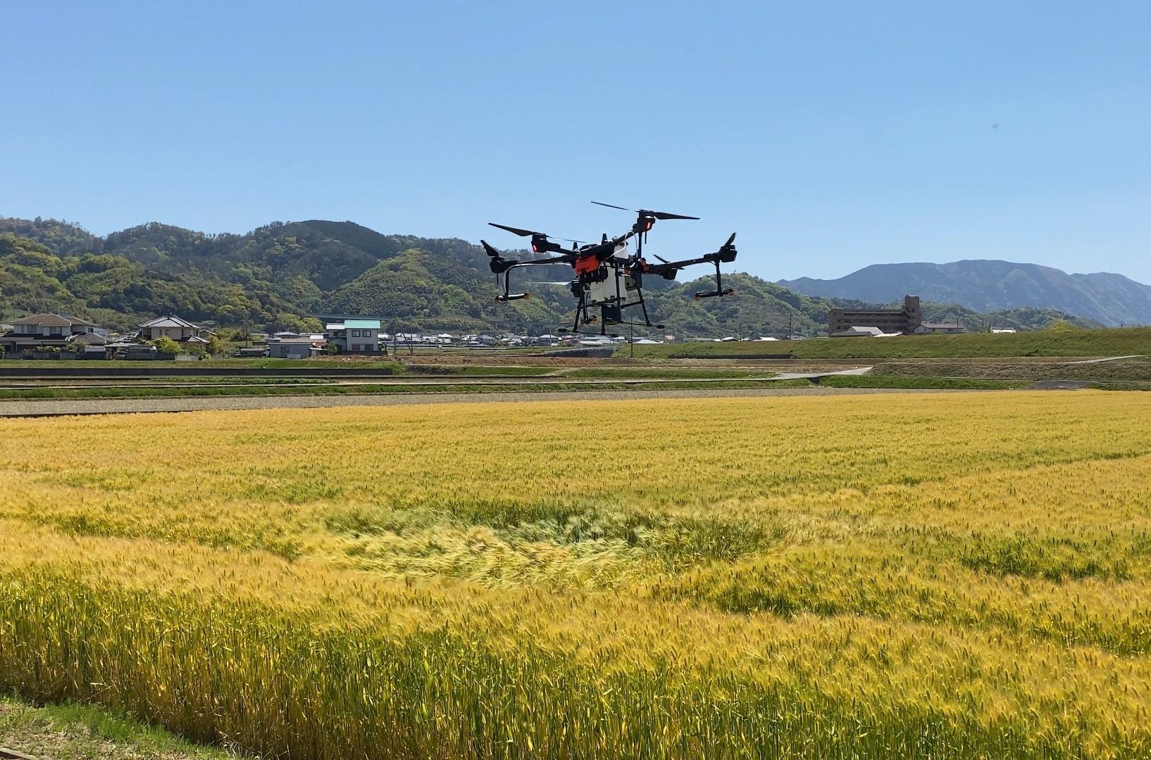 自動飛行試験