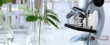 formulating-a-herbal-drug.jpg