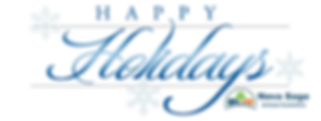 ns happy holidays banner.png