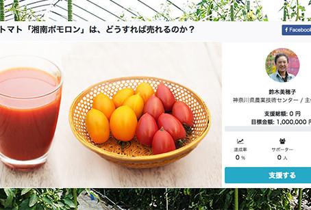 神奈川県とアカデミスト、2件のクラウドファンディングプロジェクトを公開