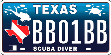 21-02-11 Plate 111920-001 smaller.png
