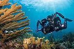 Under-Sea-15.jpg