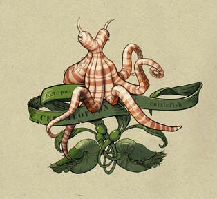 cephalopod page detail.jpg
