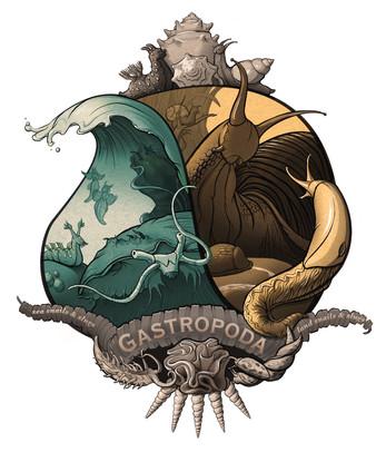 Gastropoda-best-type.jpg