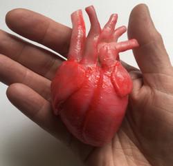 Sea Lion Heart Sculpt