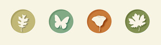Nature Walk App Icons