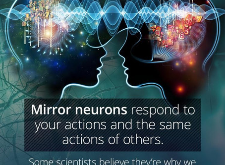 Why mirror neurons mean that...