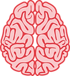 Amplenary brain illustration.png