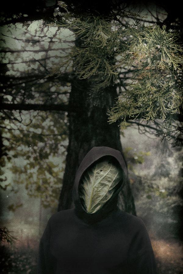 cabbage head 02d.jpg