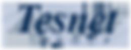 tesnet-logo-100h.png