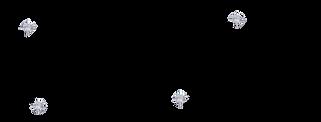 Med Logo Carissa Biele.png