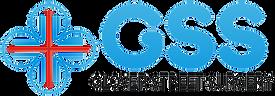 gss-final-logo.PNG