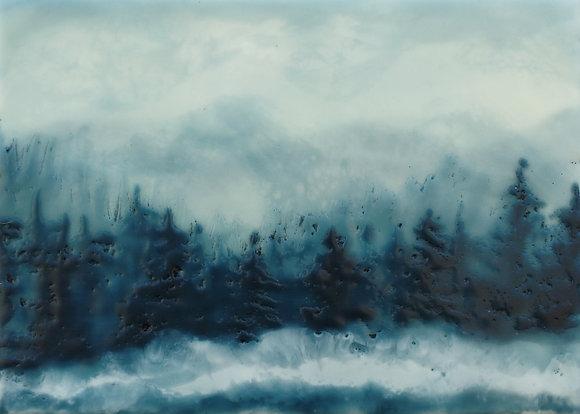Morning Mist No. 12