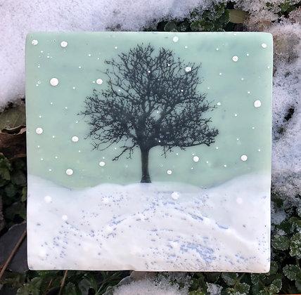 Snowfall No. 1